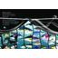 Marine species identification manual for horizontal longline fishermen